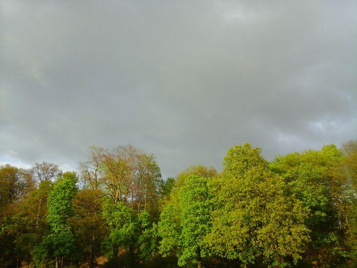 Before the Rain - Giart