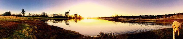 Yellow Lab and Sunset, Chico CA - Sara Anne Love