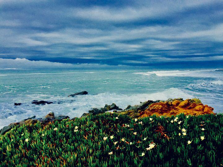 California Coast - Sara Anne Love