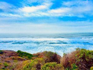 Nautical Endless Bonnie Blues, CA