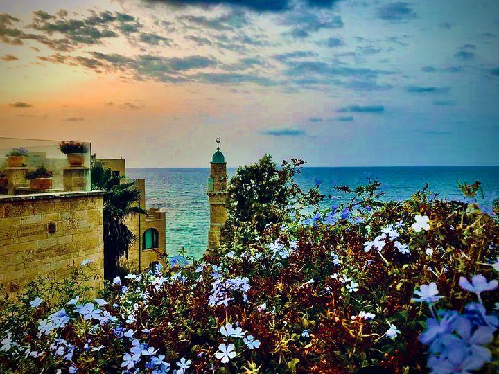 Tel Aviv-Yafo - Sara Anne Love
