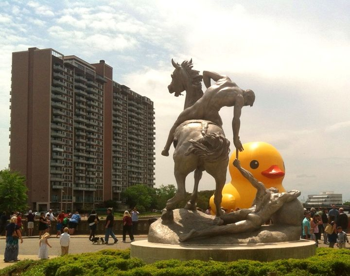 The Passing of the Duck - Ben Salomonsky Photographic Designs