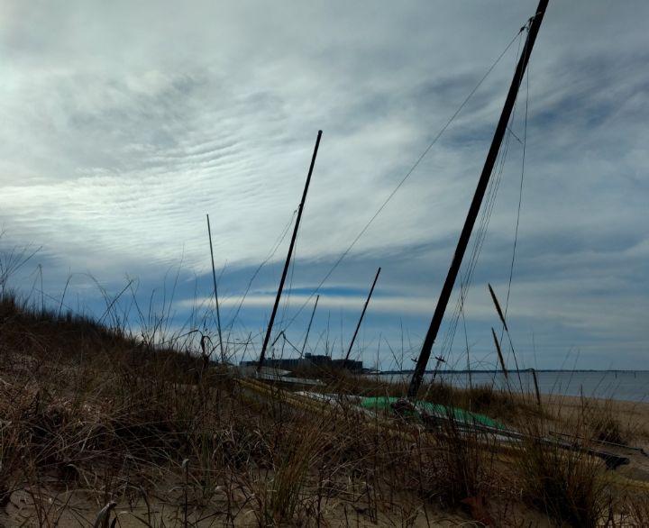 Dune Dock - Ben Salomonsky Photographic Designs
