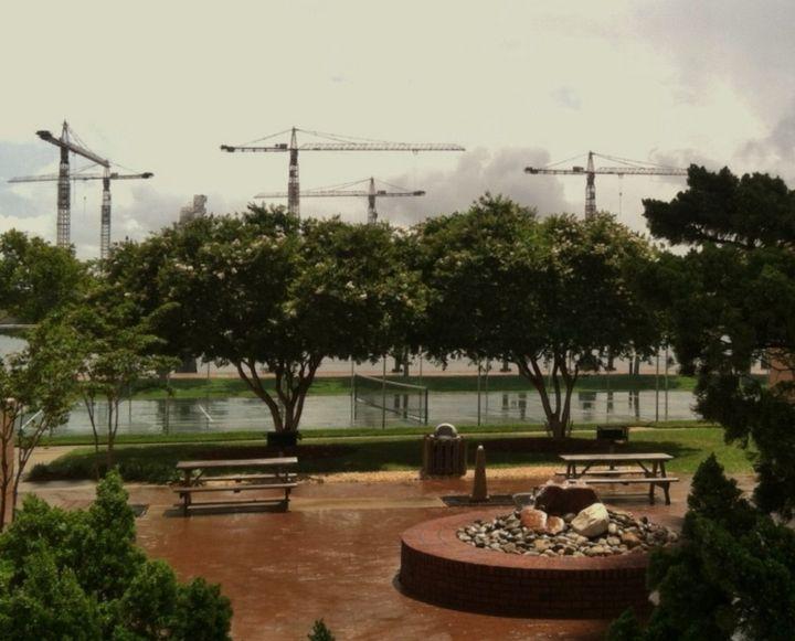 Crane Union Meeting - Ben Salomonsky Photographic Designs