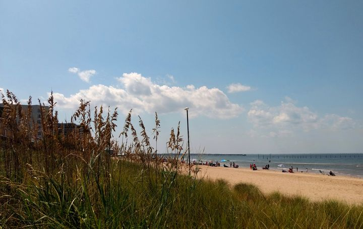 Today's Forecast: Beach - Ben Salomonsky Photographic Designs