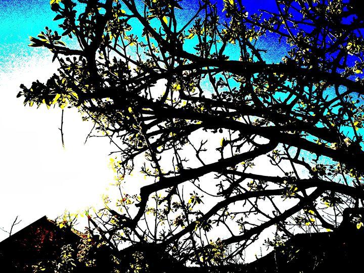 Abstract tree photo - ARTchibald
