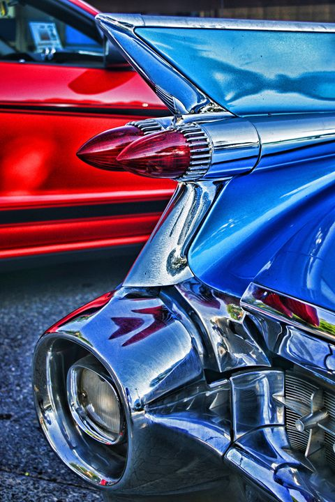 Abstract Tail Fin - R.Harris Photography