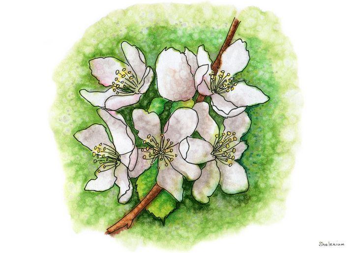 Eventually, spring will come - Elena Shokhan (Shelenium)