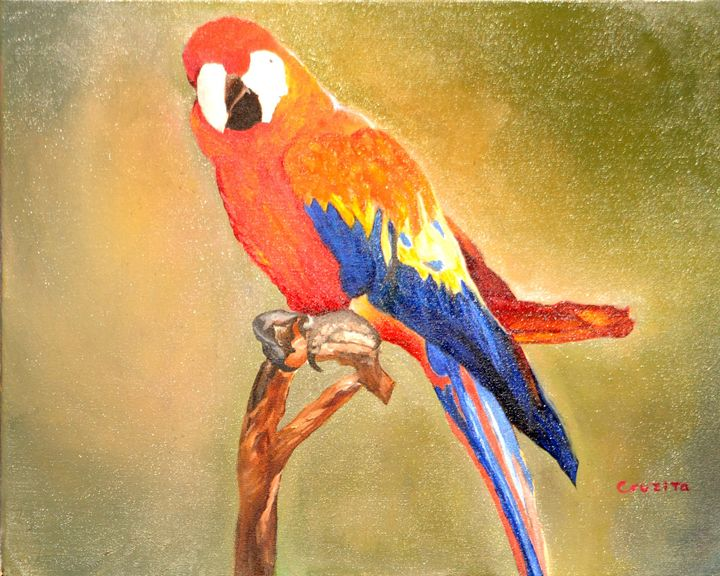 Parrot - Penny