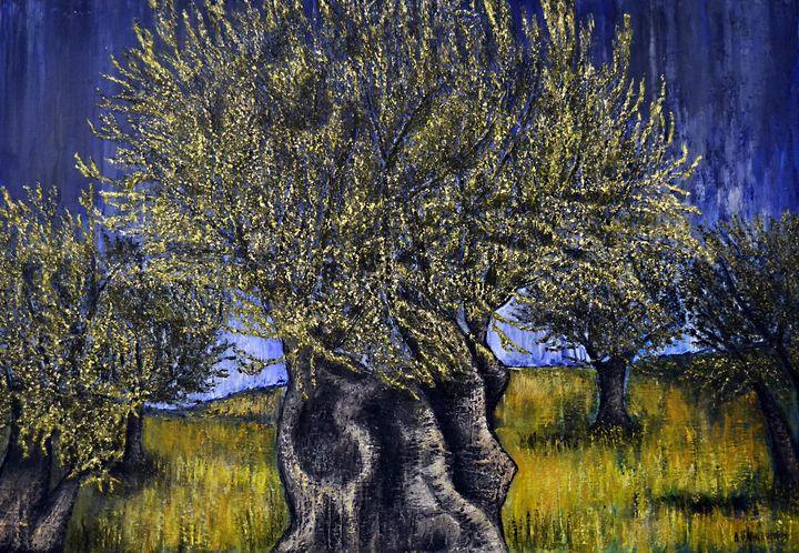 Olive Trees - Dimitra Papageorgiou