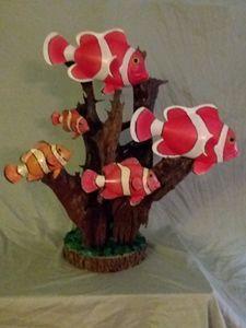 Clownfish on Driftwood