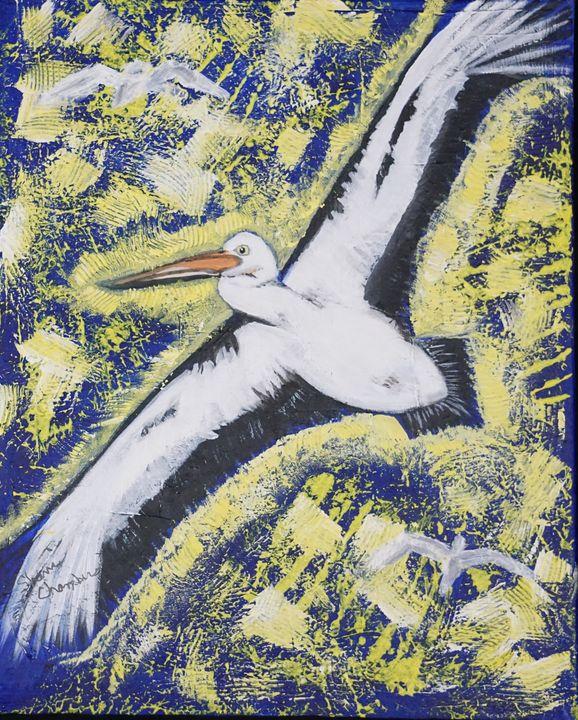 Seagull in Flight - Chambersart