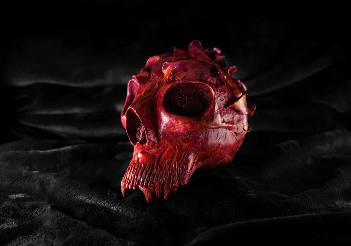 Teschiosso Sculpt - Charlie Monraw