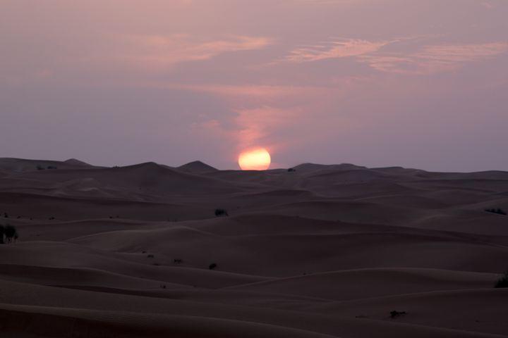 Desert 1 Dubai - Behroz BL