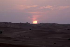 Desert 1 Dubai