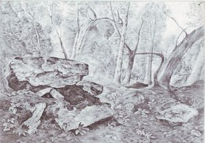 Rocks & trees,pencil art