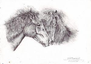 Pencil art,two horses