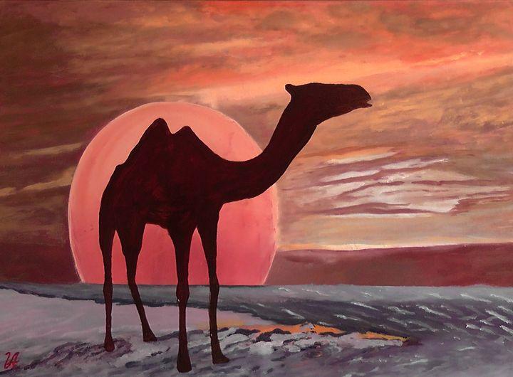 Camel - Valery