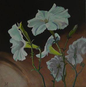 Petunias - Valery