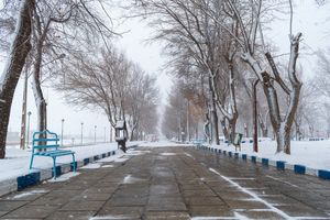 Snowy walkway in the park