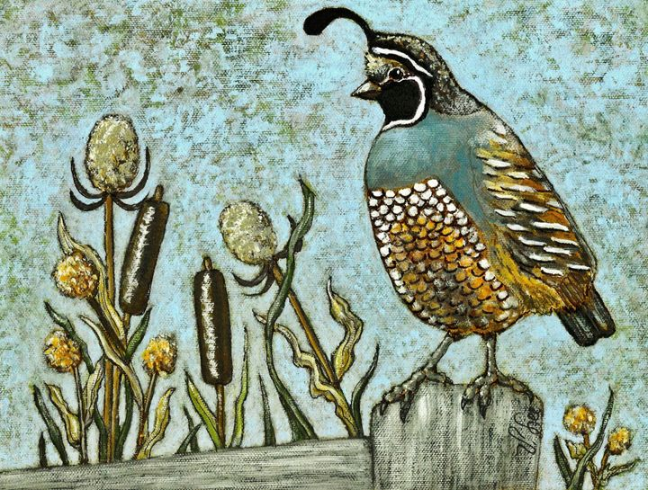CALIFORNIA QUAIL - VLeeORIGINALS
