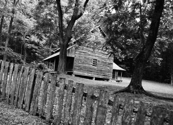 Cabin in the Woods - Shelley Photography