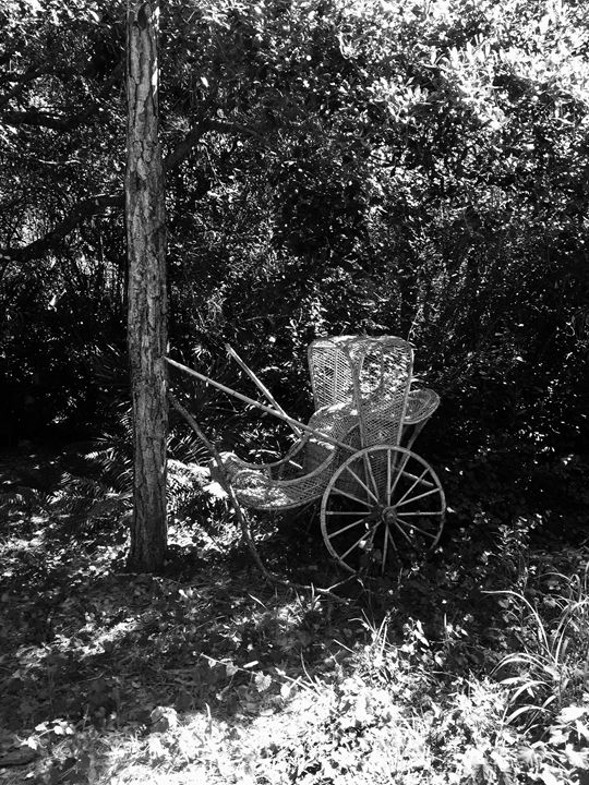 antique carriage in the garden - Shelley Photography