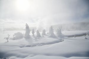 HOLY SNOWSCAPE in Yellowstone Geyser