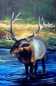 Àgbòrín (rein deer)