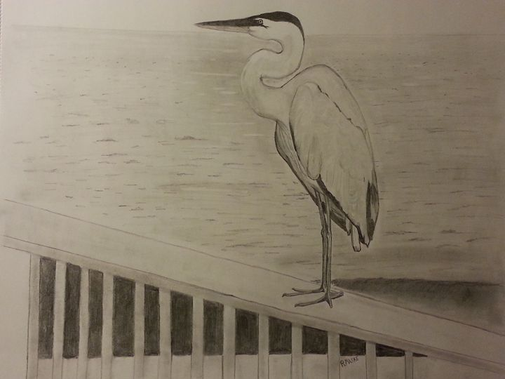 Heron on Gulf State Pier - Randy Maske Artist