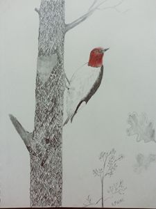 Woodpecker - Randy Maske Artist
