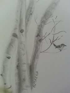 Fat wren - Randy Maske Artist