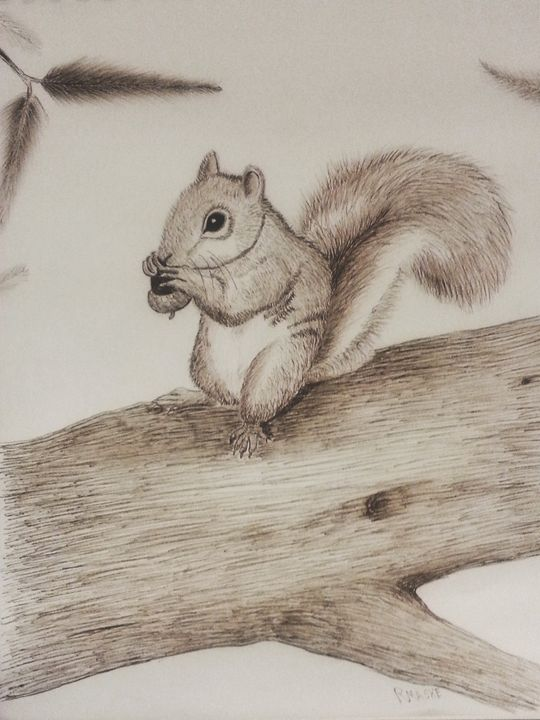 Squirrel on s tree - Randy Maske Artist