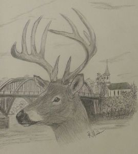 Untitled Deer