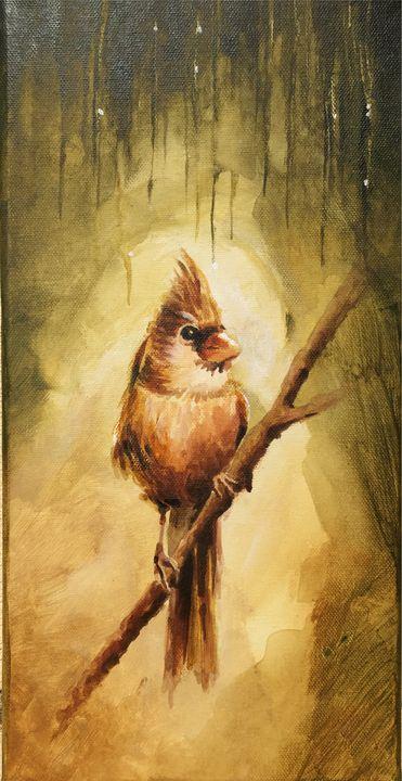 Bird - David Gallery