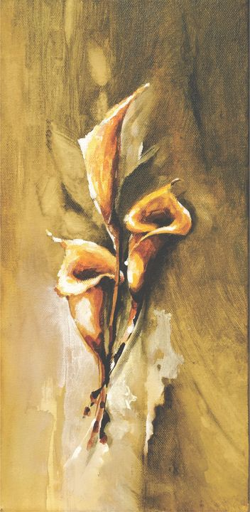 Lily Flowers - David Gallery