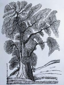 The Vintage Woods - My Art Gallery