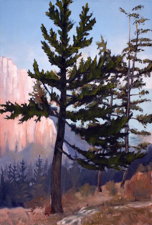 Bryce Canyon - Tom David