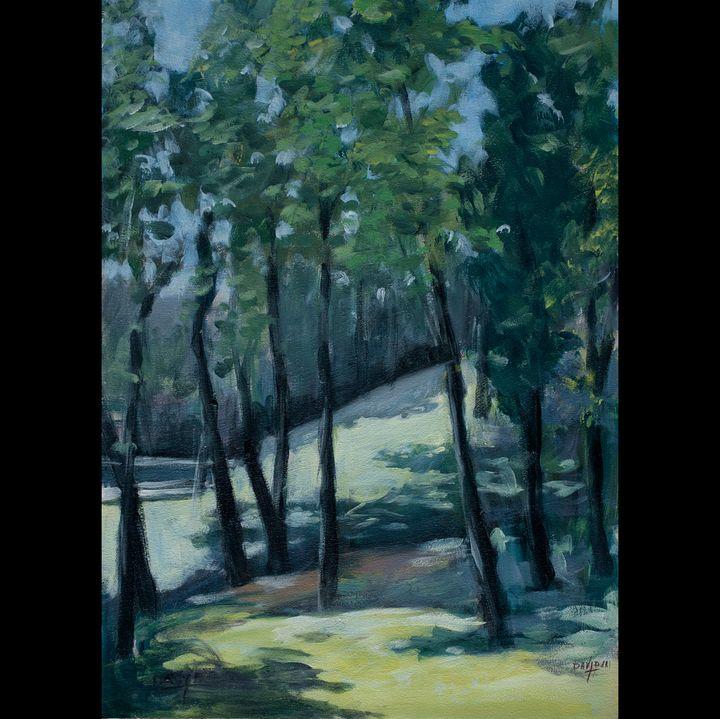 Indian Mound - Tom David
