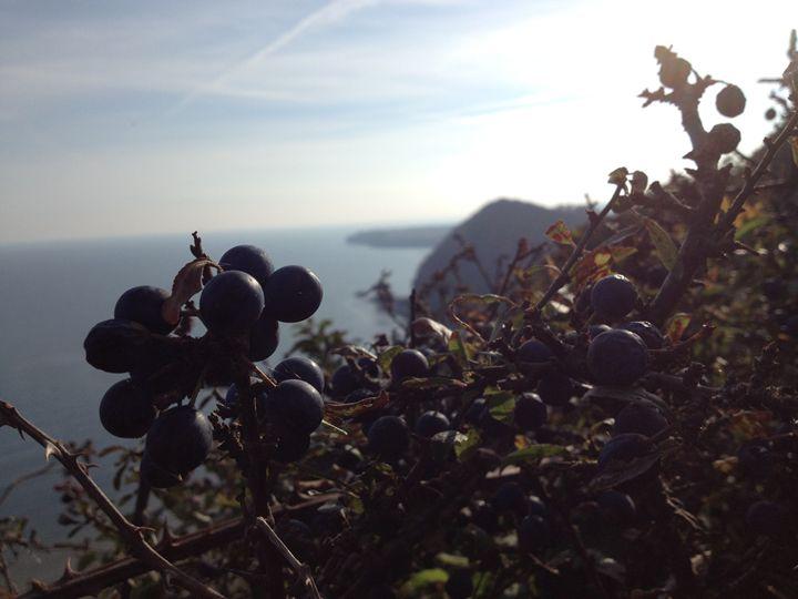 Sidmouth Beach 04 - Phaedra's Photography