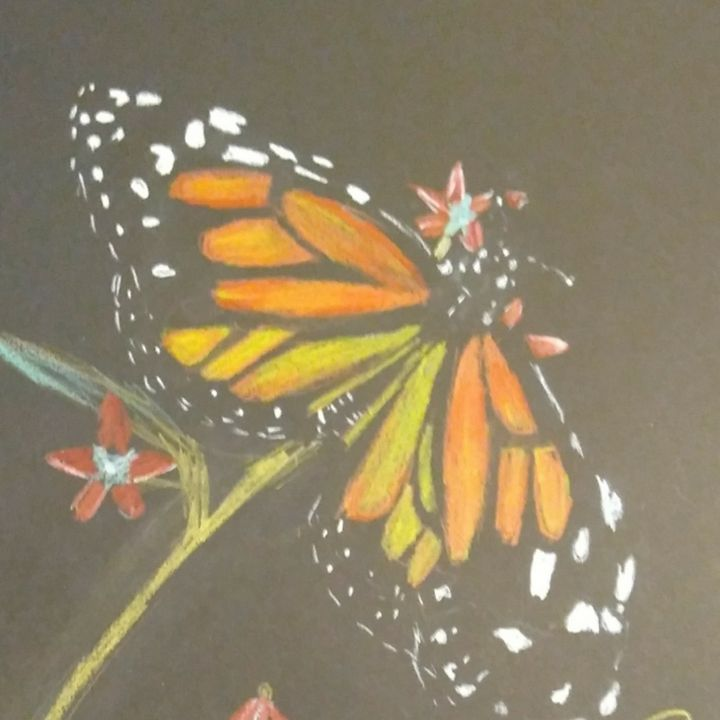 Beautiful butterfly - ArtprincessShop