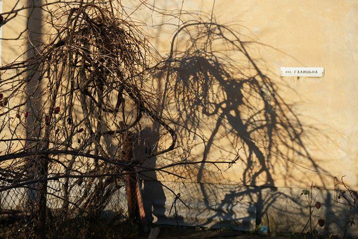 shadow - Henyk