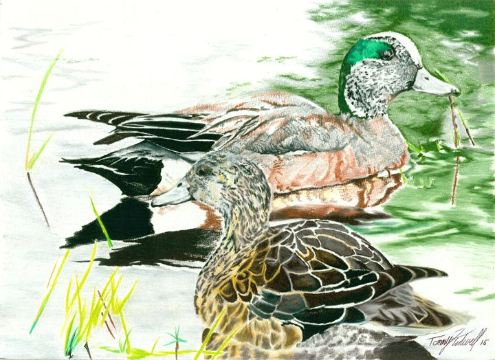 Tranquil Ducks - 7ONE9 Gallery