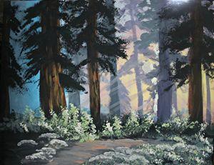A Walk Through the Innocent Forest