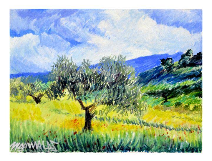 Olive trees in Mani - Zygomalas