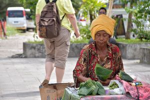 Balinese Woman and Tourist