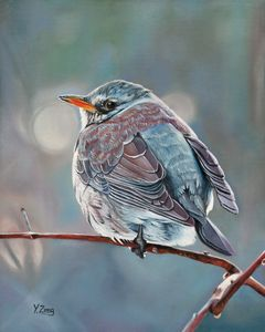 Oil painting - Wild bird