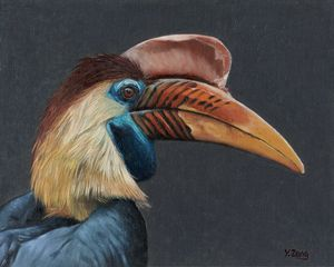 Oil painting - Hornbill portrait