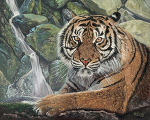 Oil painting - Tiger with waterfall - Yue Zeng