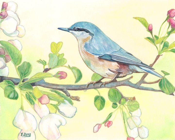 Gouache painting - Wild bird - Yue Zeng